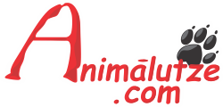 Animalutze.com